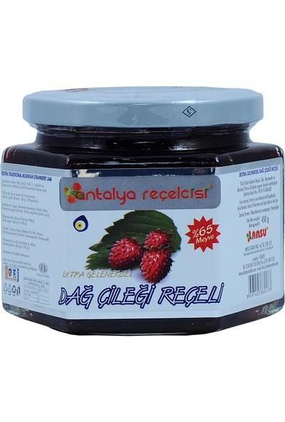 Antalya Reçelcisi Dağ Çileği Reçeli 450 gr