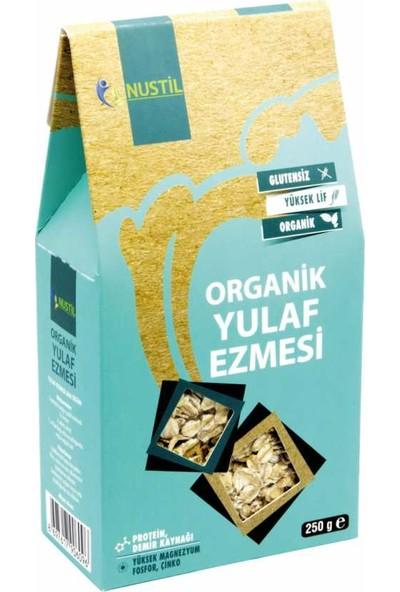 Nustil Organik Glutensiz Yulaf Ezmesi 250 gr