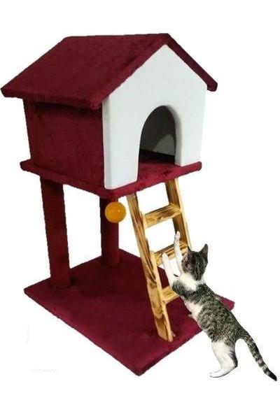 Usm Merdivenli Kedi Evi