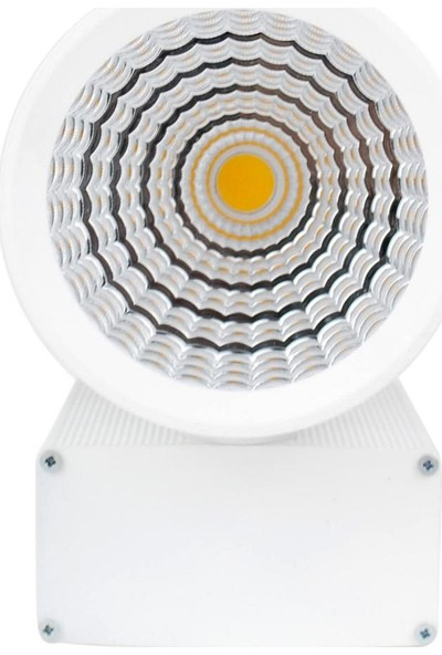 Er Elektronik Miami Serisi Ray Spot Armatür 3000K 29W 3200Lm 60° Lensli