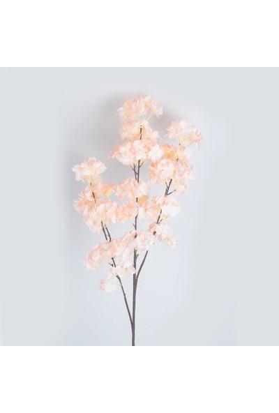 Çiçekmisin Bahar Dalı Dekoratif Dal Çiçek