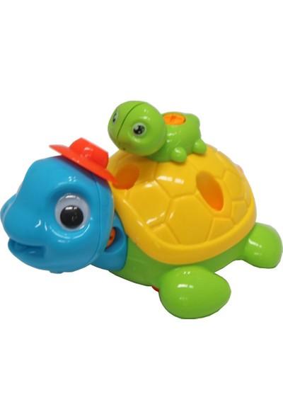 Sök Tak Kaplumbağa