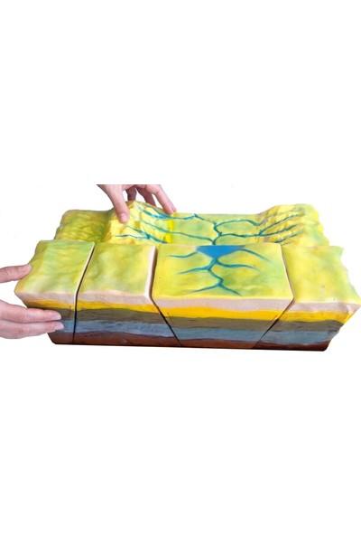 Ece Fay Kırıkları Modeli – Deprem – 42CM x 22CM x 28CM
