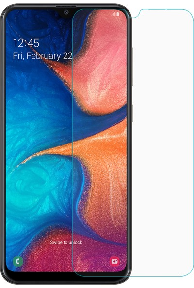 Microsonic Samsung Galaxy A20e Nano Cam Ekran Koruyucu