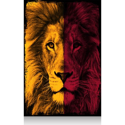 Tablomega Mini Ahsap Tablo Galatasaray Aslan 20x30cm Fiyati