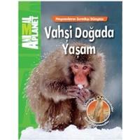 Animal Planet Vahşi Doğada Yaşam-Kolektif