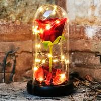 Mory Concept Dekoratif Cam Fanus Güllü & Işıklı