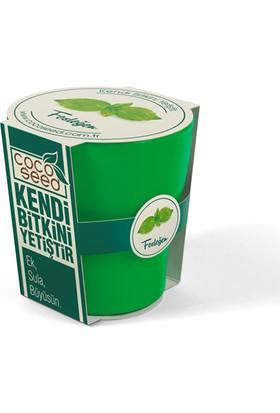 Cocoseed Bitki Yetiştirme Kiti - FesleğenYeşil Bio Plastik Saksı
