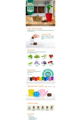 Cocoseed Bitki Yetiştirme Kiti - Acı BiberTuruncu Bio Plastik Saksı