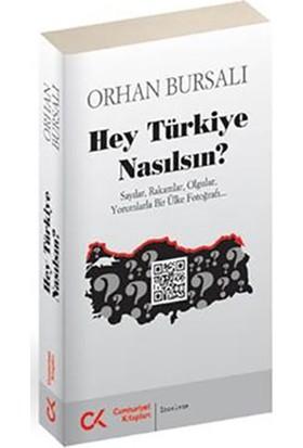 Hey Türkiye Nasılsın? - Sayılar, Rakamlar, Olgular,Yorumlarla Bir Ülke Fotoğrafı-Orhan Bursalı