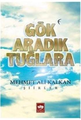 Gök Aradık Tuğlara-Mehmet Ali Kalkan