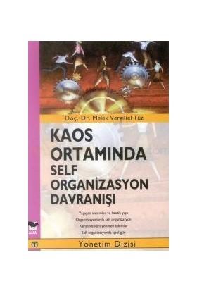 Kaos Ortamında Self Organizasyon Davranışı-Melek Vergiliel Tüz