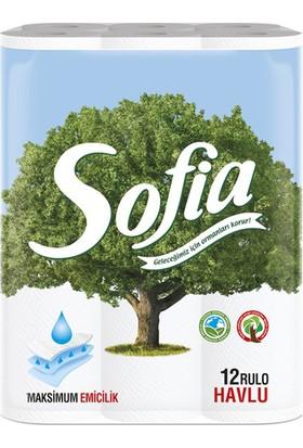 Sofia Mutfak Kağıt Havlusu 12'Li