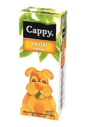 Cappy Kayısı Nektar Tetra 200 ml 24'lü