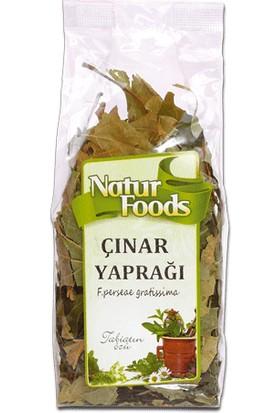 Natur Foods Çınar Yaprağı - 20 gr
