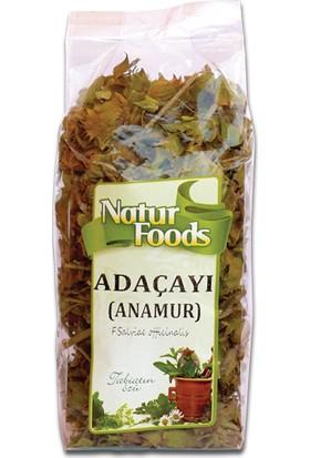 Natur Foods Adaçayı (Anamur) - 25 gr