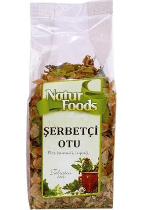 Natur Foods Şerbetçi Otu 30 gr
