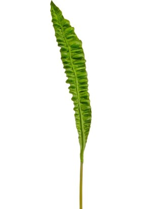 The Mia Fiorina Yaprak Yeşil