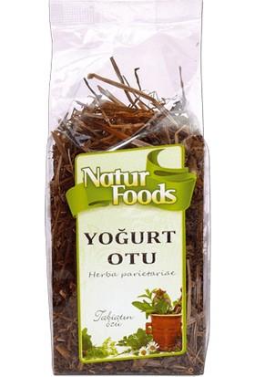 Natur Foods Yoğurt Otu - 30 gr