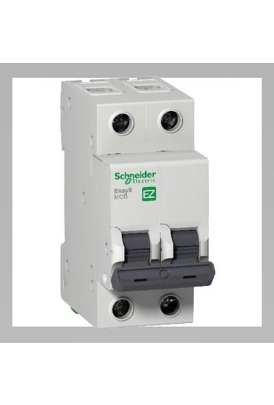 Schneider Electric Ez9F43240 3Ka 40A C Eğrisi 2P Otomatik Sigorta