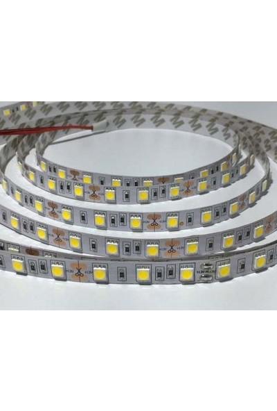 Ookay Şerit LED 3 Çip Gün Işığı