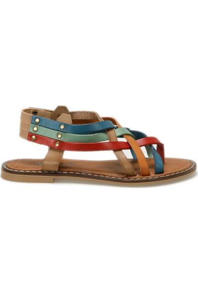 Miss F Ds18126-19S Çok Renkli Kadın Sandalet