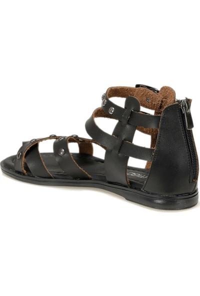 Butigo 19Sf-1602 Siyah Kadın Sandalet