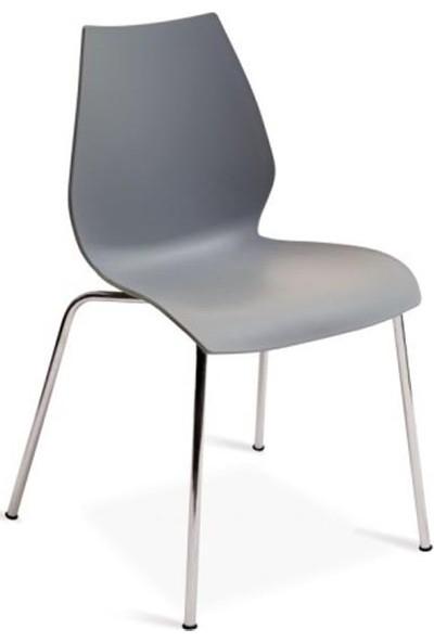 Papatya Sandalye Krom Ayaklı Sirena