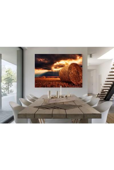 Meteor Galeri Dekoratif Saman Balyası Gün Batımı Resimli Tek Parça Kanvas Tablo