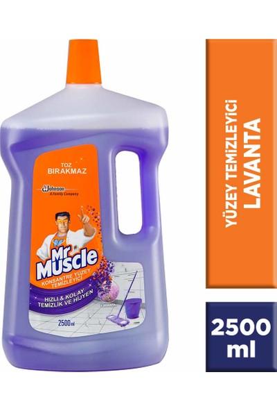 Mr Muscle Yüzey Temizleyici 2500 ml Lavanta