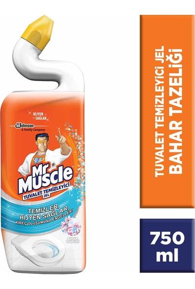 Mr Muscle Likit Klozet Temizliği Orman Esintisi 750 ml