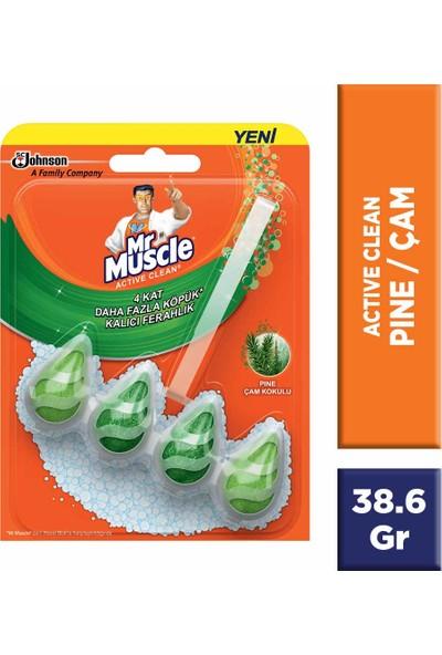Mr Muscle Active Clean Klozet Blok Çam Kokulu