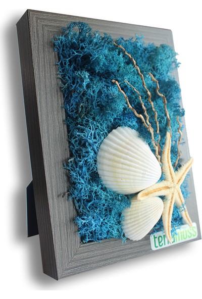 Terramoss Solmayan Doğal Yosun Tablo Starfish Moss