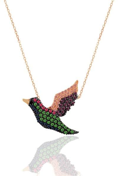Nayino Takı Rengarenk Tatlı Cennet Papağanı Gümüş Kolye
