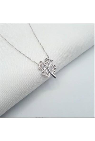 Nereze 925 Ayar Zirkon Taşlı Yonca Kolye Kadın Gümüş Kolye