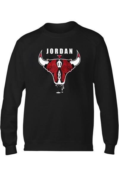 Nsj Sportive Air Jordan Sweatshirt