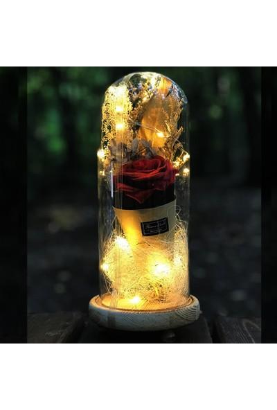 Mory Concept Dekoratif Cam Fanus Işıklı & Kırmızı Güllü