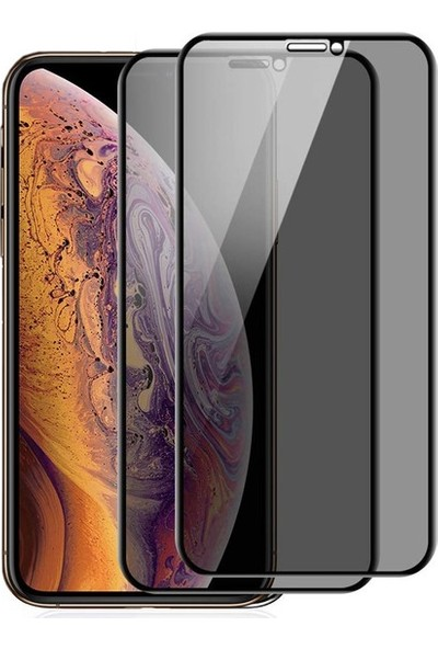 Ehr. Apple iPhone X Ekran Koruyucu Cam Hayalet Cam Privacy Cam Siyah