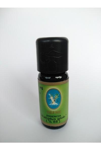 Nuka Okaliptus Globus* %85 Aromatik Cilt Bakım Ökaliptus 10 ml