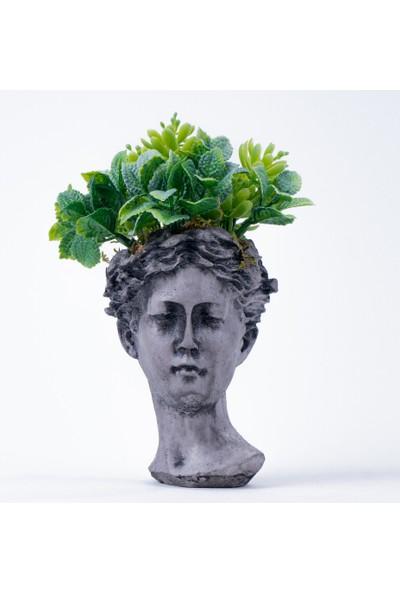 Bappay Helen Büst Saksı Üzerinde Sukulent Dekoratif Çiçek