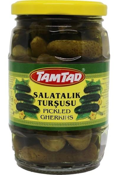 Tamtad Salatalık Turşu No: 00 370 Cc