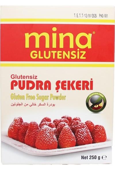 Mina Glutensiz Pudra Şekeri 250 gr
