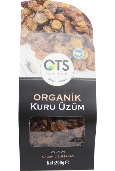 Ots Organik Kuru Üzüm 200 gr