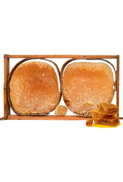 Maraş Gurme Pervari Kasnak Çıta Bal 900 gr - 1050 gr Teneke Kutu