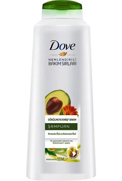 Dove Avakado Özlü Dökülmeye Karşı Bakım Şampuanı 550 ml