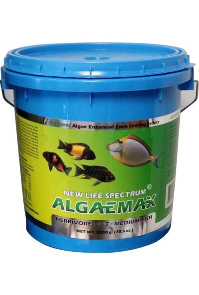 New Life Spectrum Algaemax Medium 2000 Gr. Otçul Balık Yemi
