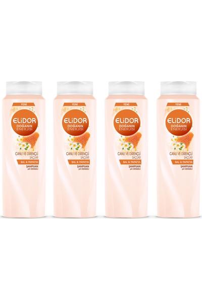 Elidor Doğanın Enerjisi Canlı ve Dirençli Saçlar İçin Şampuan 500ml x 4