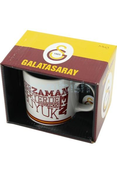 Galatasaray Lisanslı Taraftar Kupa