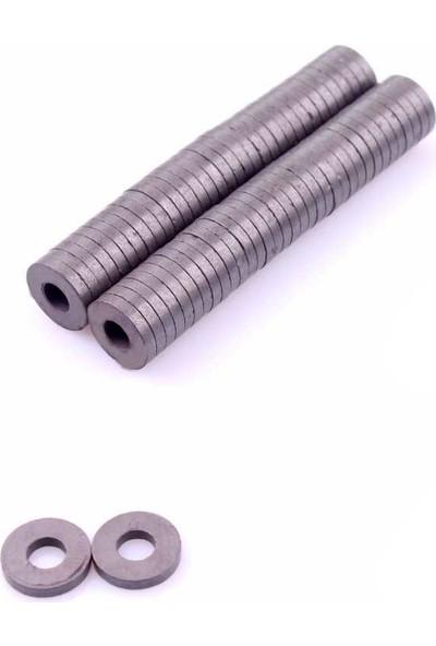 hobi24 Yuvarlak Delikli Mıknatıs 3 x 18 mm 50'li