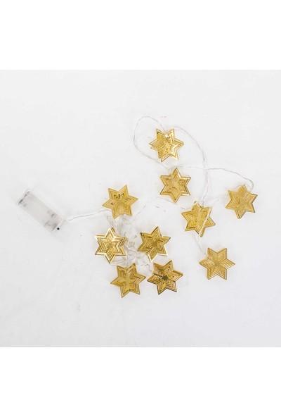 Euro Flora LED Işıklı Yıldız 180 cm Pilli-10'lu
